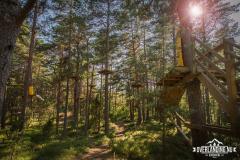 Aldrig fel att klättra i träden :)