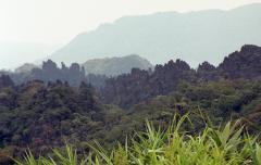 Laos200 (24)